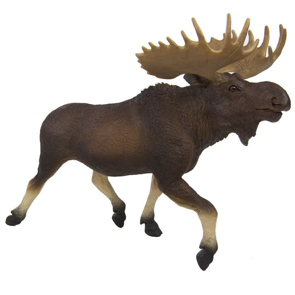 Moose Wildlife Wonders Figure Safari Ltd