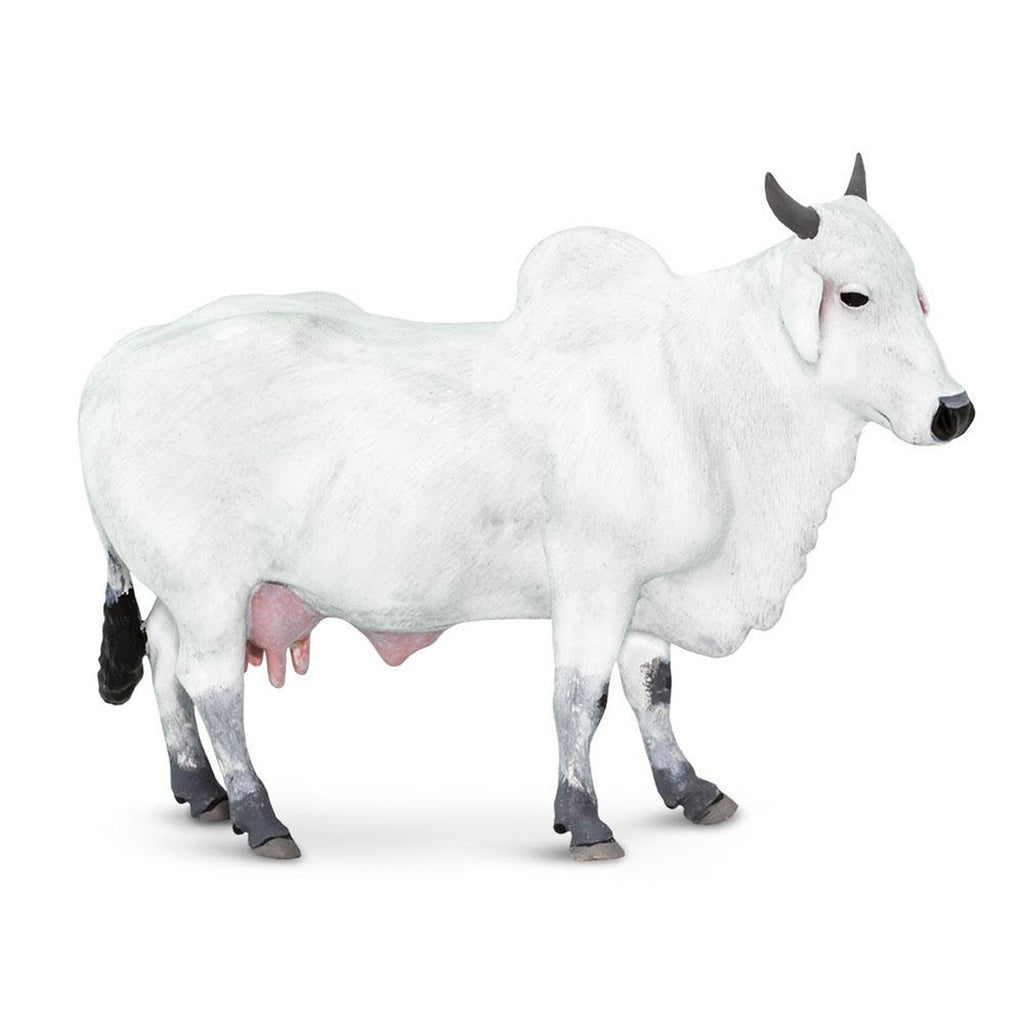 Ongole Cow Animal Figure Safari Ltd 100150