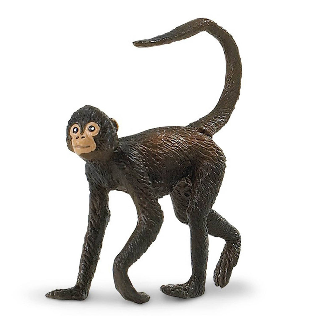 Spider Monkey Wildlife Figure Safari Ltd - Radar Toys