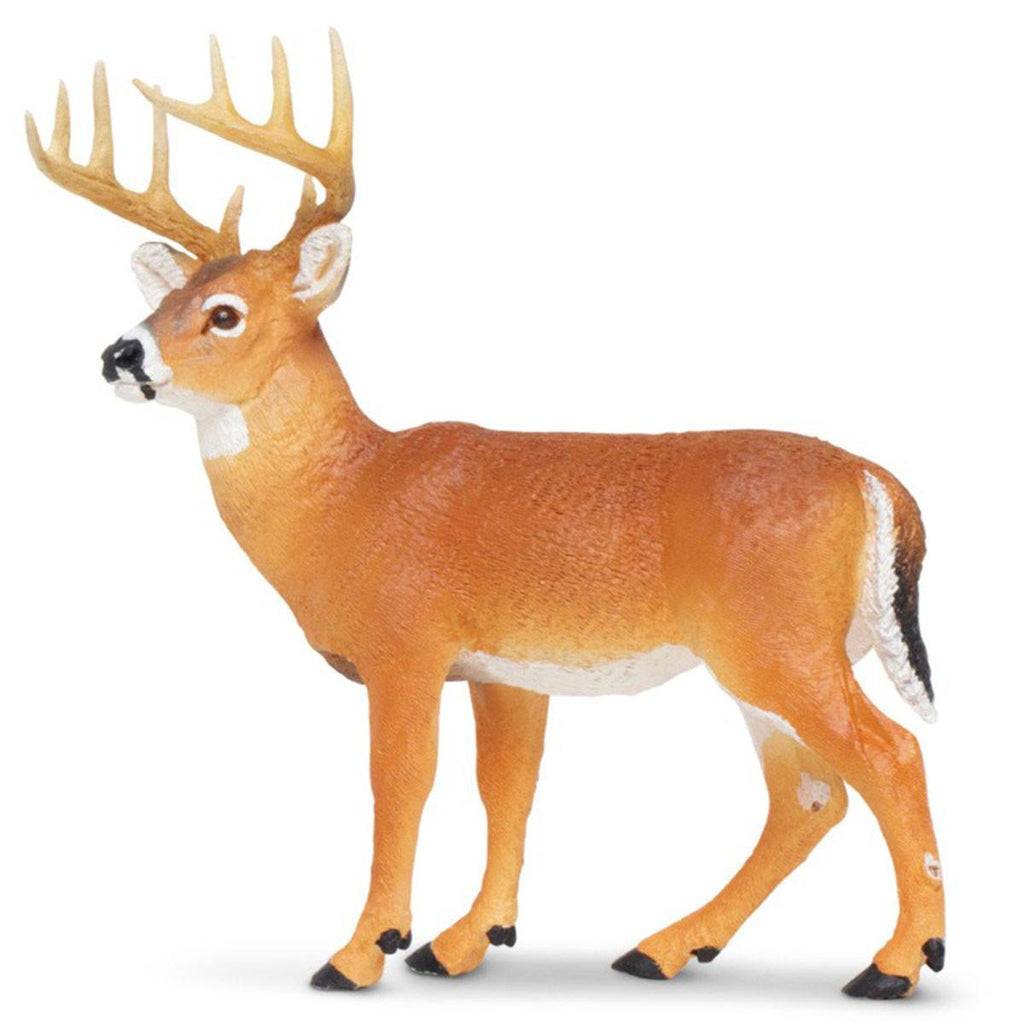 Whitetail Buck North American Wildlife Figure Safari Ltd - Radar Toys
