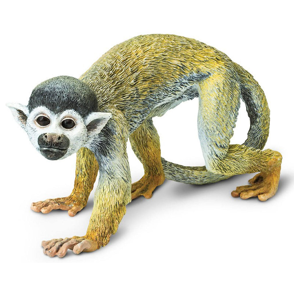 Squirrel Monkey Incredible Creatures Figure Safari Ltd - Radar Toys