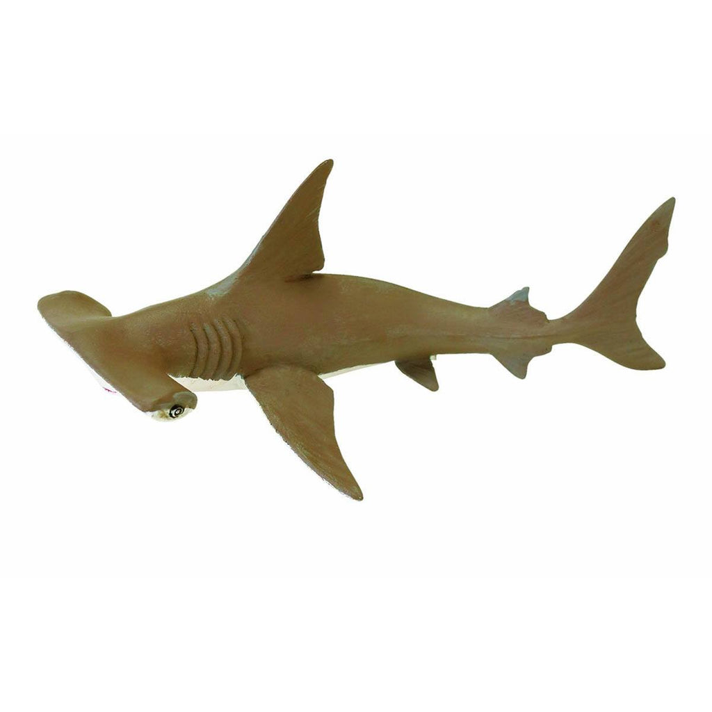 Baby Hammerhead Shark Incredible Creatures Figure Safari Ltd - Radar Toys