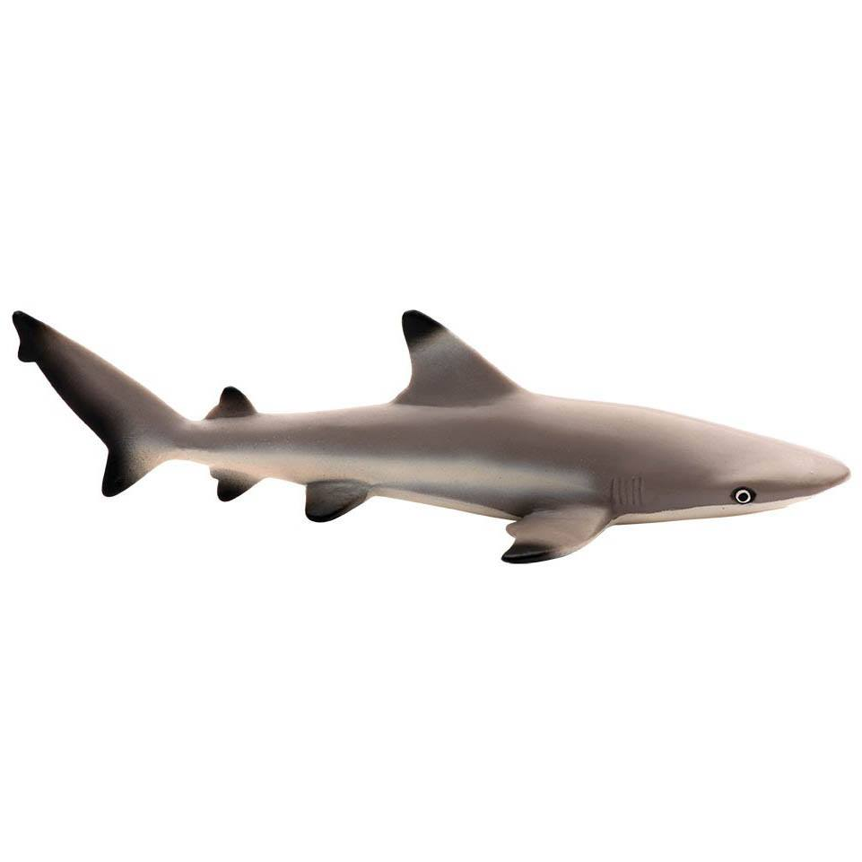 Blacktip Reef Shark Sea Life Figure Safari Ltd