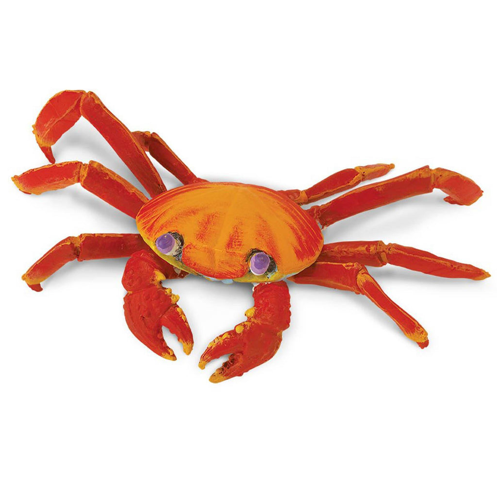 Galapagos Sally Lightfoot Crab Incredible Creatures Figure Safari Ltd