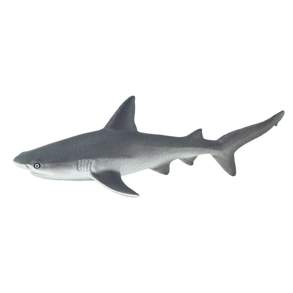 Gray Reef Shark Ocean Figure Safari Ltd 100099