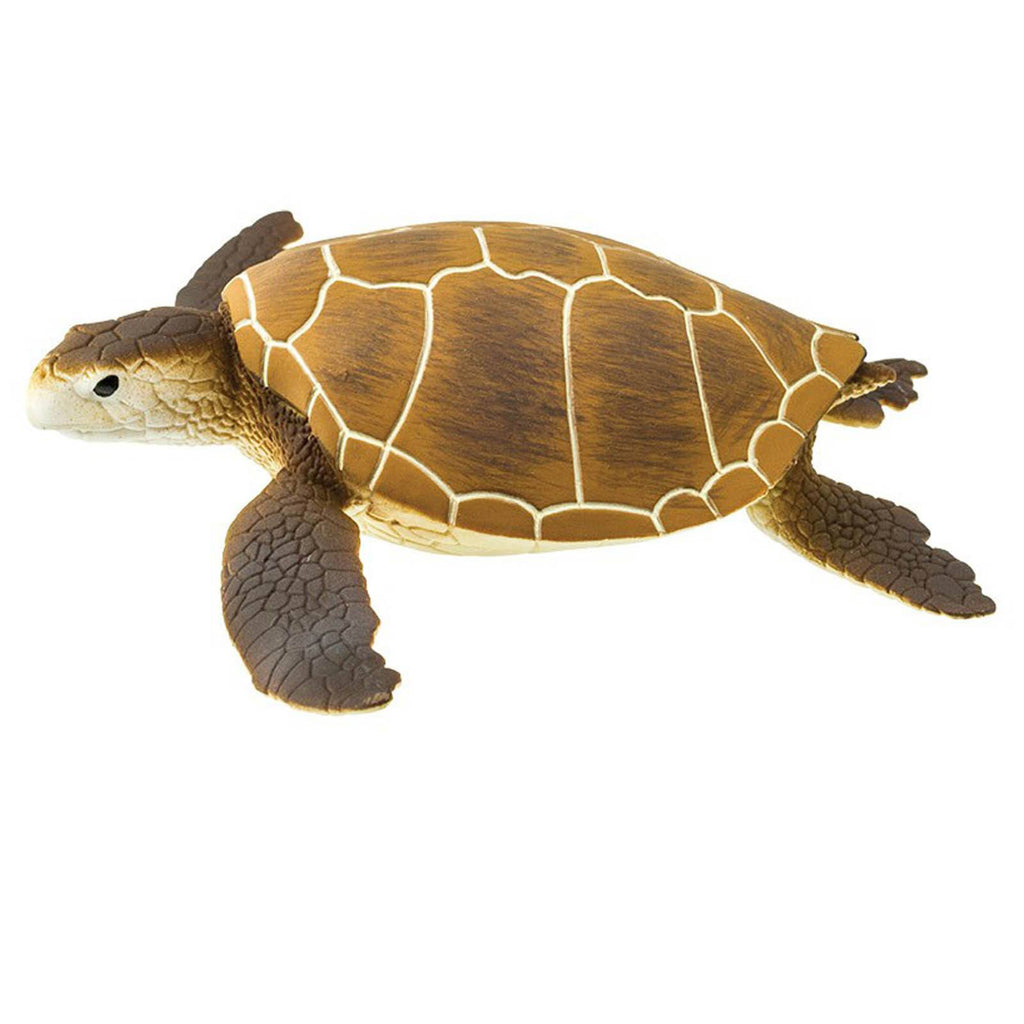 Green Sea Turtle Wild Safari Figure Safari Ltd