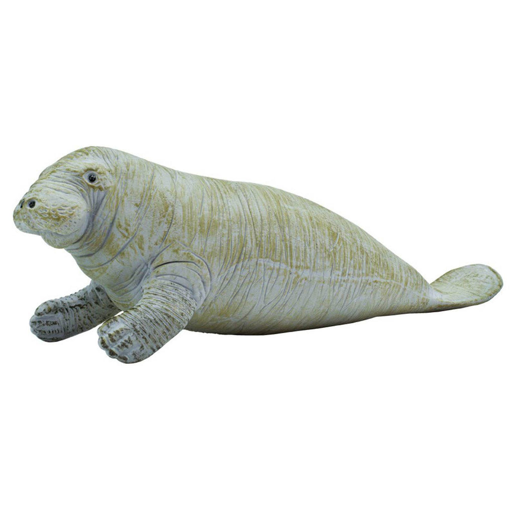 Manatee Sea Life Safari Ltd