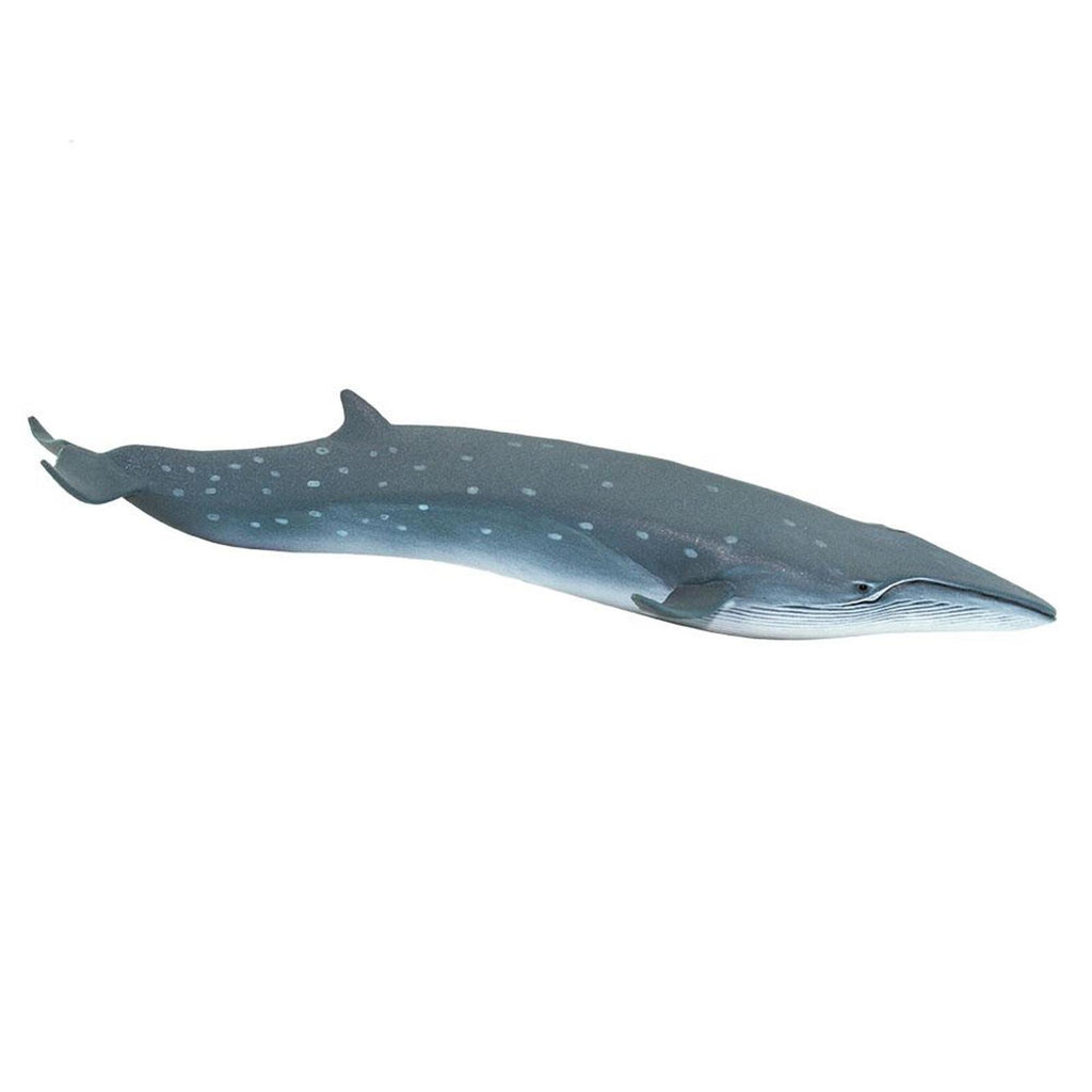 Sei Whale Ocean Figure Safari Ltd 100098