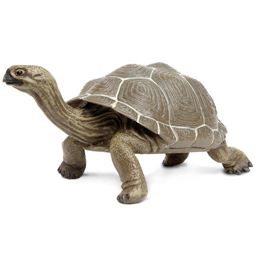 Tortoise Large Incredible Creatures Figure Safari Ltd - Radar Toys