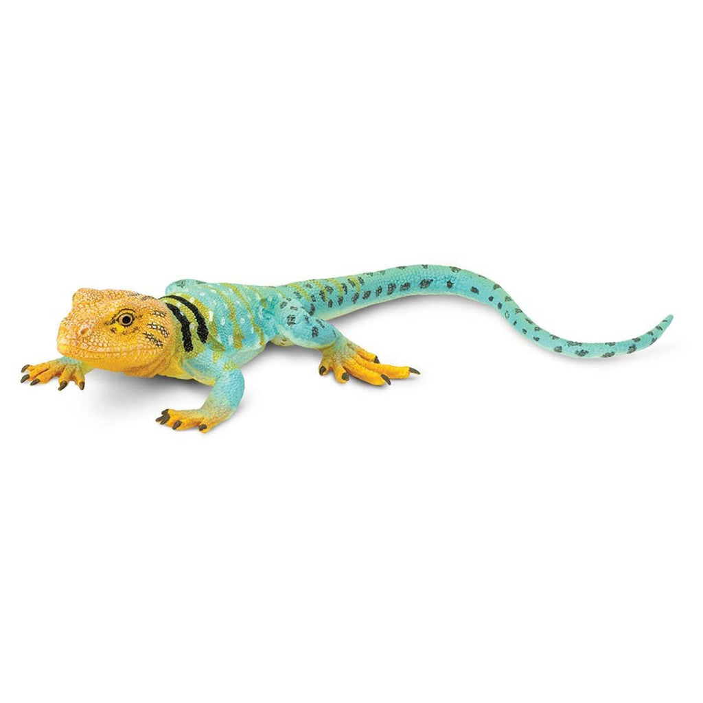 Collared Lizard Incredible Creatures Figure Safari Ltd