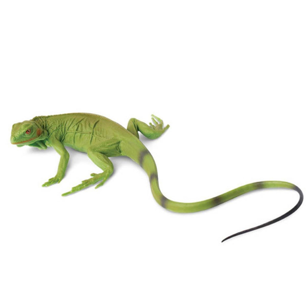 Iguana Baby Incredible Creatures Figure Safari Ltd