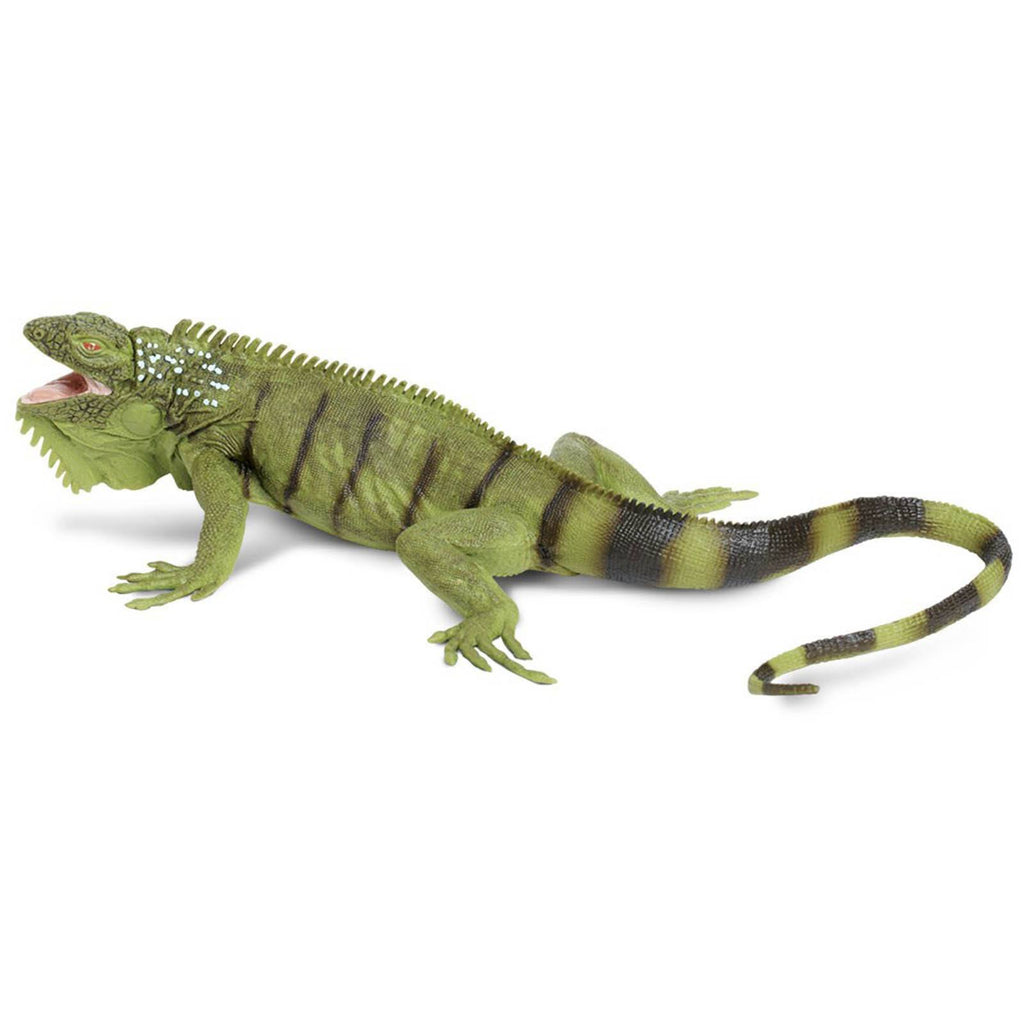 Iguana Incredible Creatures Figure Safari Ltd - Radar Toys