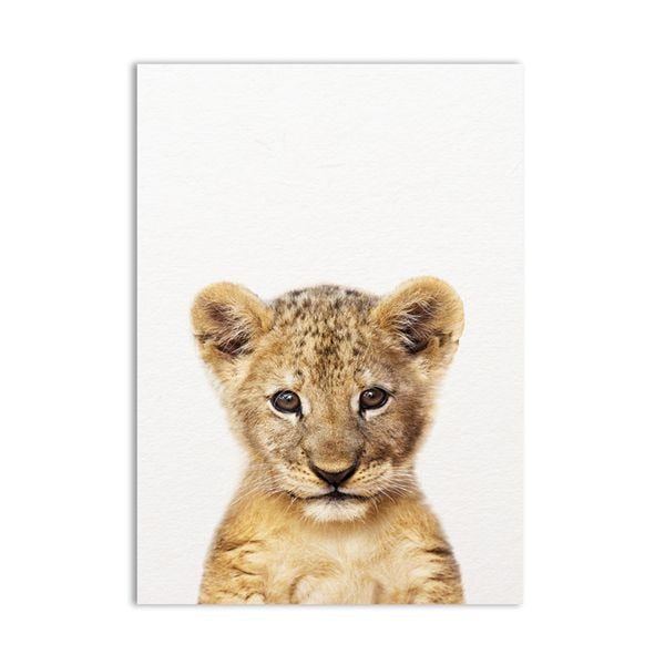 Safari Baby Animals Wall Art Print Poster