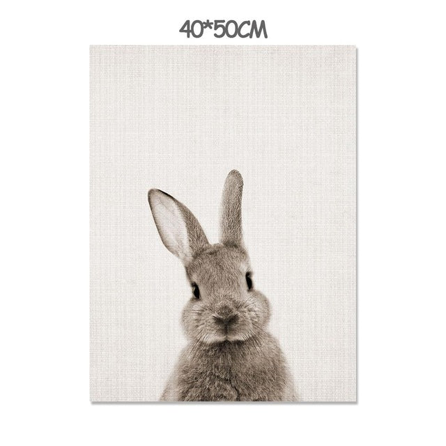 Baby Animal Rabbit Tail Wall Art