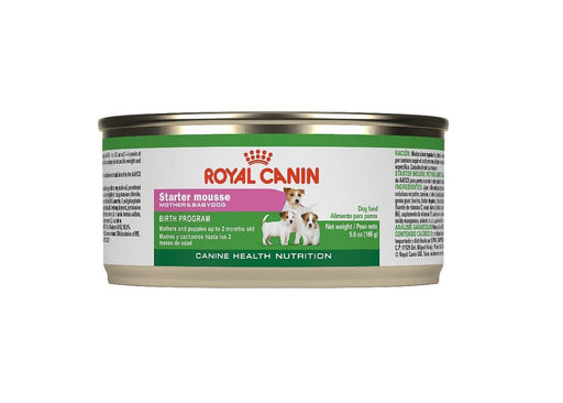 Royal Canin ® Starter Mousse Dog Food - exxab.com