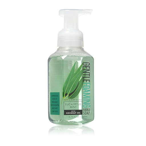 Bath & Body Works Eucalyptus Mint Foaming Hand Soap exxab.com