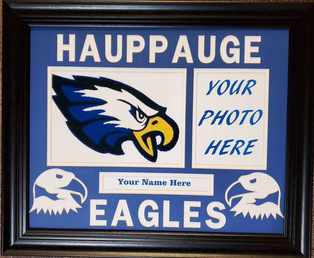 Hauppauge Eagles Double Panel