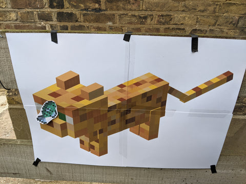 minecraft party feed the ocelot