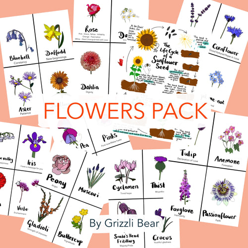 Flowers Pack (PDF) - Grizzli Bear