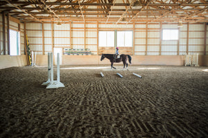 Giddy Up! The Best Places to Horse Around in the DMV