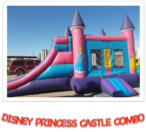 DISNEY PRINCESS CASTLE COMBO  DRY ONLY
