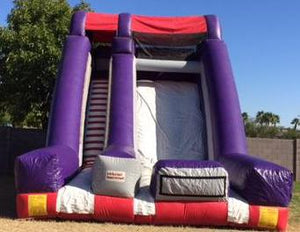 MEGA INFLATABLE SLIDE   DRY ONLY