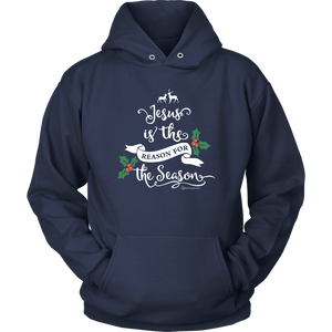 Jesus is the Reason Hoodie - Online Christian Store