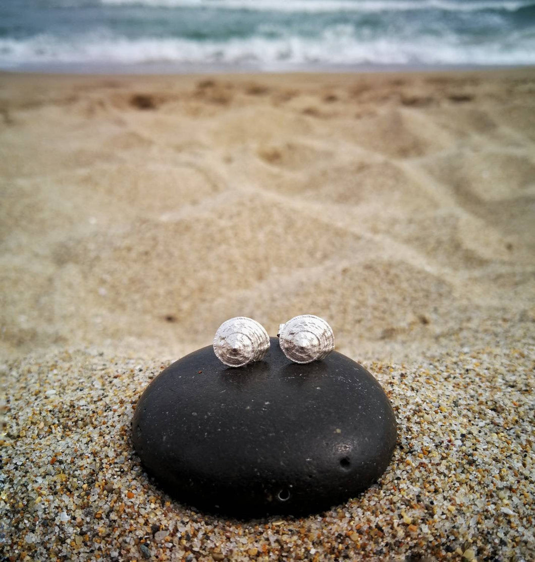 Seashell sterling silver stud earrings for women