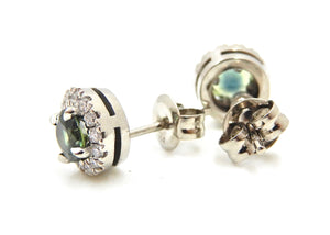 Diamond and Parti Sapphire 18 Carat White Gold Stud Earrings