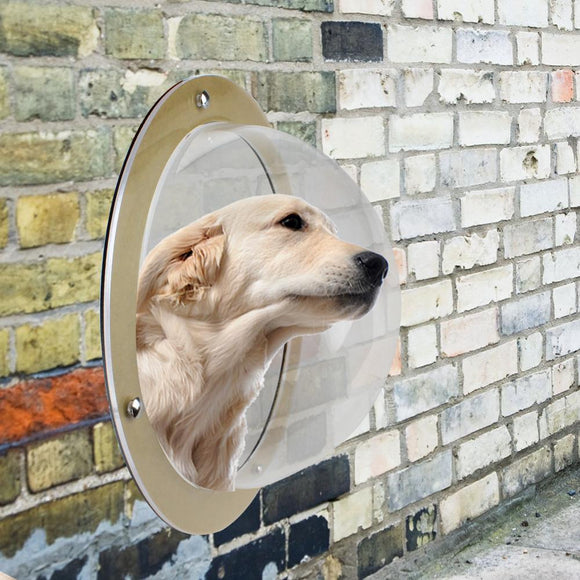 Pet Fence Bubble Window-I Have Never Seen That
