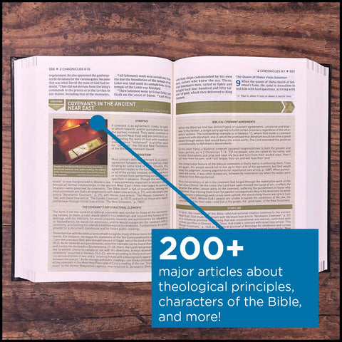 Storyline Bible Over 200 major articles about theological principles, characters of the Bible, the political and cultural influences on the people of Israel, and the Bible's major events