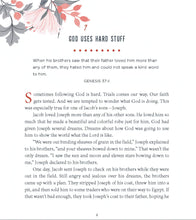 Load image into Gallery viewer, Faith Forward Family Devotional: 100 Devotions by Patrick Schwenk and Ruth Schwenk