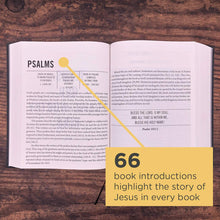 Load image into Gallery viewer, The Jesus Bible, NIV Edition, Leathersoft over Board, Pink, Comfort Print by Passion and Louie Giglio