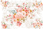 Redesign with Prima Rub On Transfers - Rose Celebration 6 Sheets 112 x 76.2cm