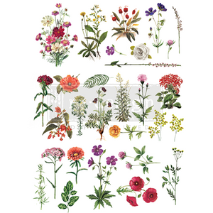 Redesign with Prima Rub On Transfers - Floral Collection 60.96 x 86.36cm