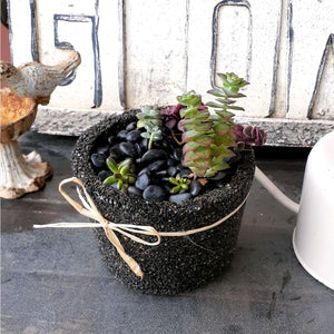 Exotic Pebble Pots - Black 6""