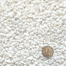 "Load image into Gallery viewer, Natural Decorative White Bean Pebbles 1/5"" Size (10-lb Bag)"