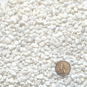 "Natural Decorative White Bean Pebbles 1/5"" Size (10-lb Bag)"