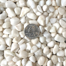 "Load image into Gallery viewer, Decorative Polished White Pebbles 3/8"" Gravel Size (10-lb Bag)"