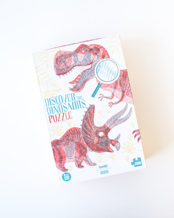 Discover the Dinosaurs Seek & Find Puzzle