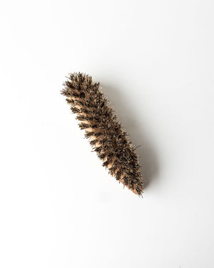 Pointed Scrub Brush