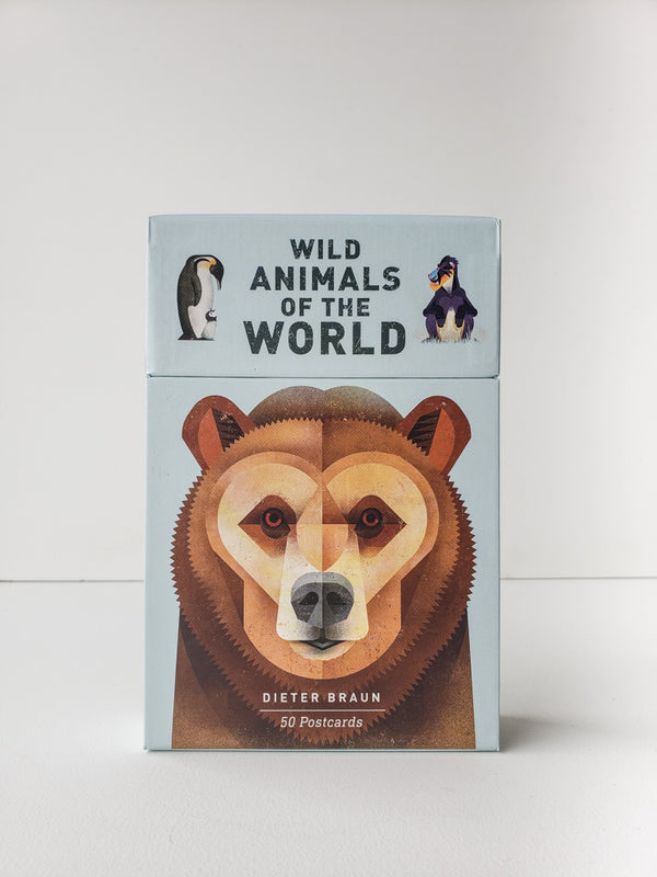 Wild Animals of the World — Postcards
