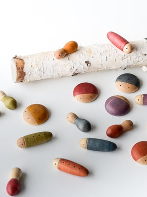 Loose Parts — Insects