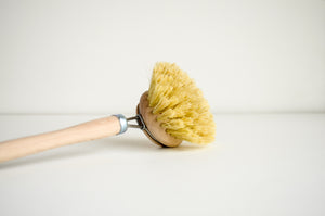 Dish Brush — White Bristle