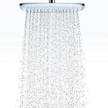 hansgrohe 27390001 Puravida 400 Showerhead with Ceiling Mount