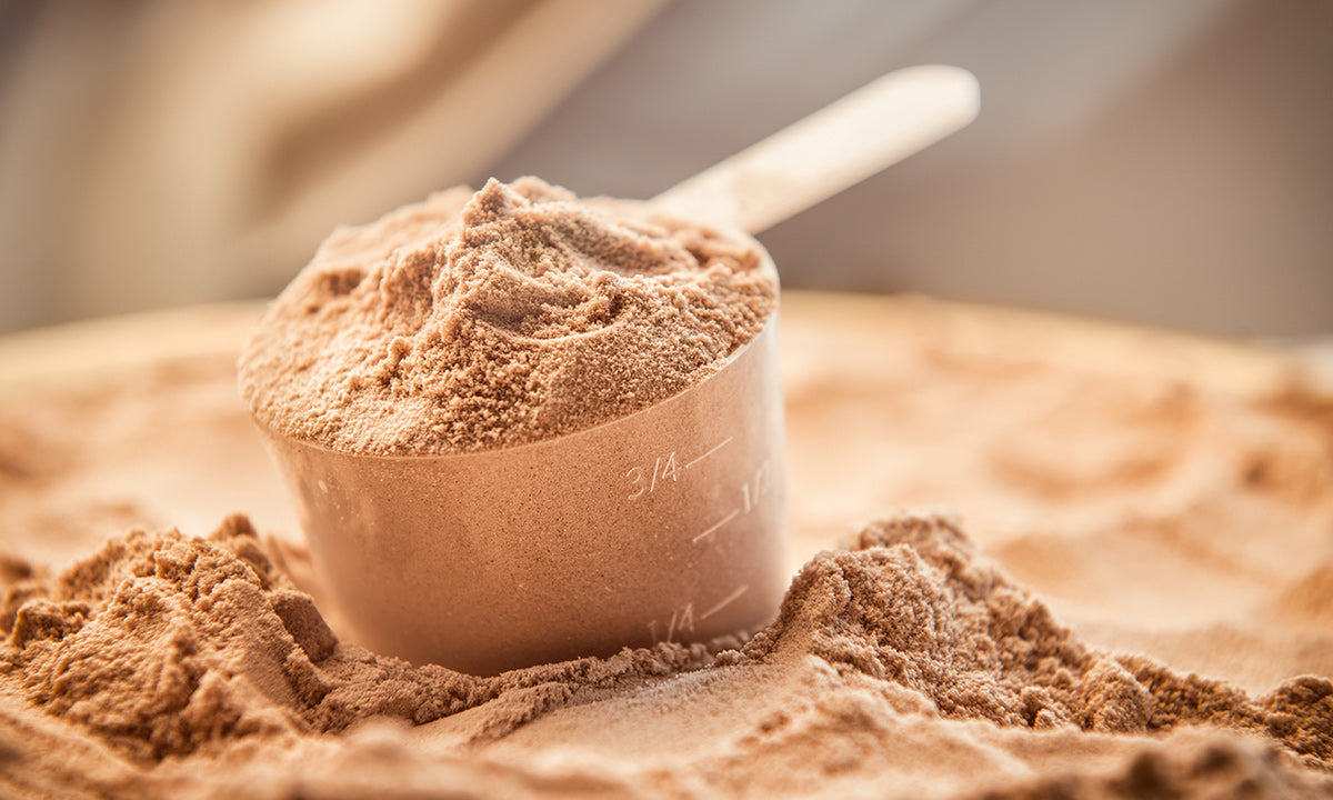 We've Got The Scoop On Protein: WHEN, WHAT AND HOW MUCH?