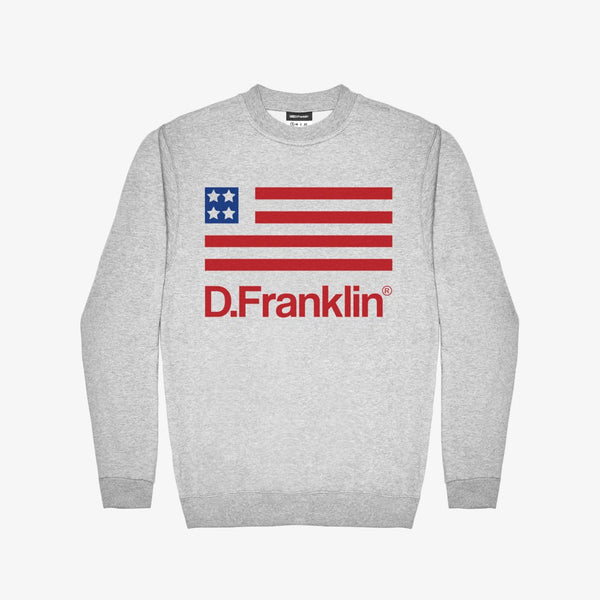 USA Sweatshirt Grey