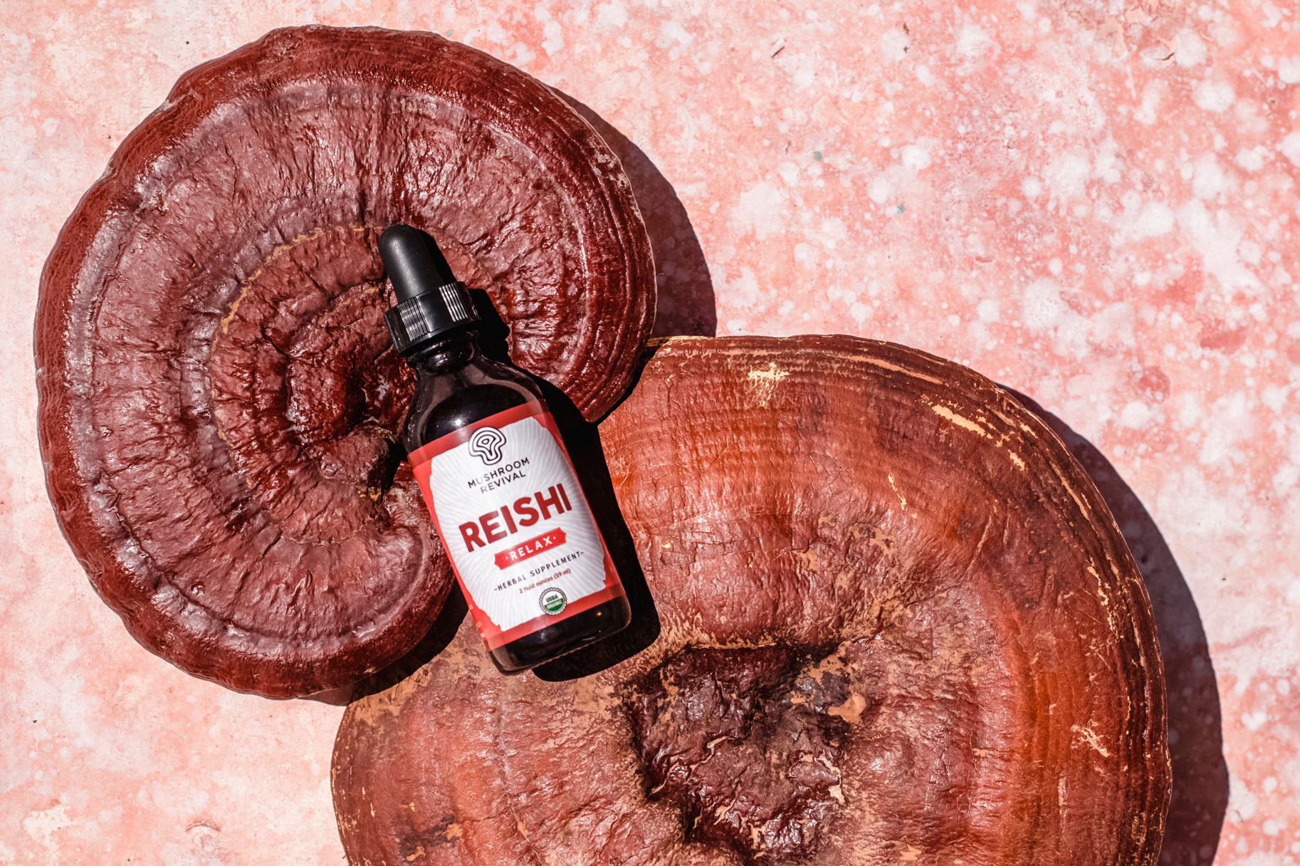 Organic Reishi Mushroom Tincture for Relaxation