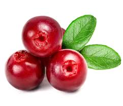 eastcoast vapor e-liquid cranberry