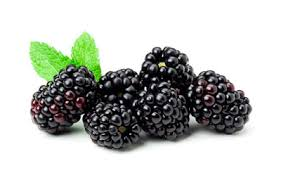 eastcoast vapor e-liquid blackberry